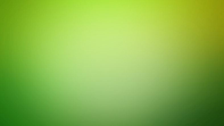 The color of the year as picked by Etsy: Chartreuse