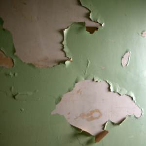 Read more about the article Looking out for Lead Paint