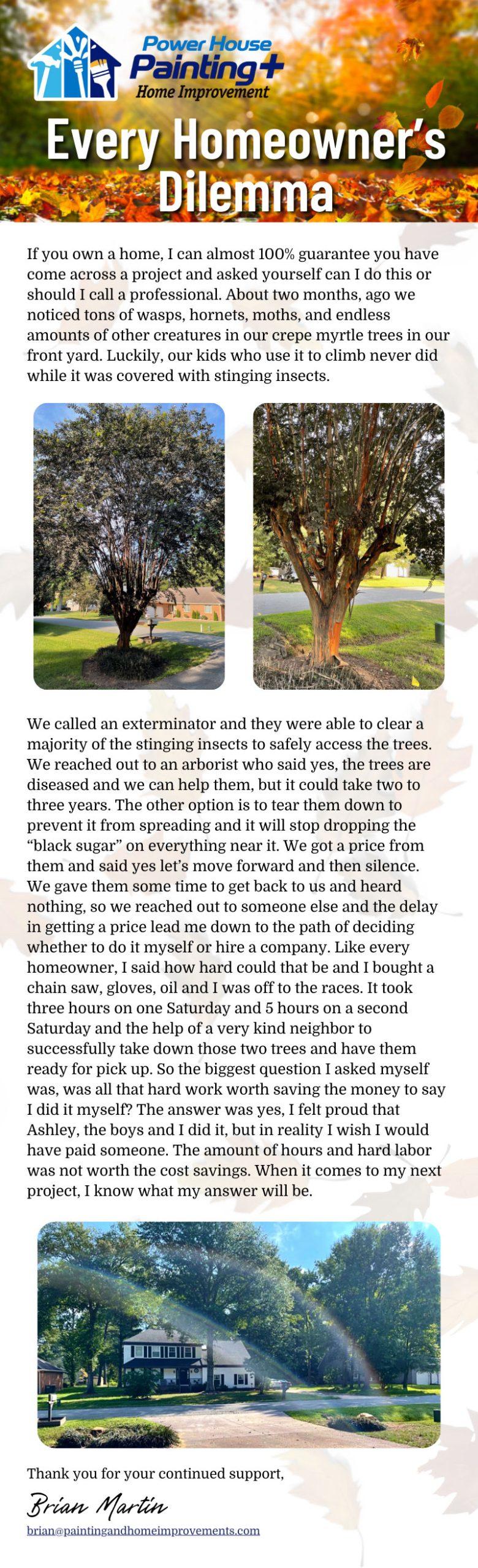 Every Homeowner's Dilemma 3